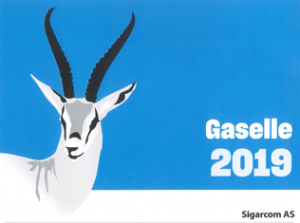 Sigar.com AS Gaselle bedrift 2019